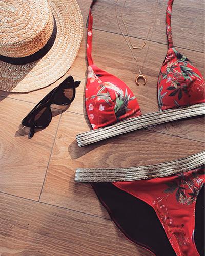 Blog2 I AM Patterns Patron Couture Maillot Bain Leia Gratuit S.bribrii